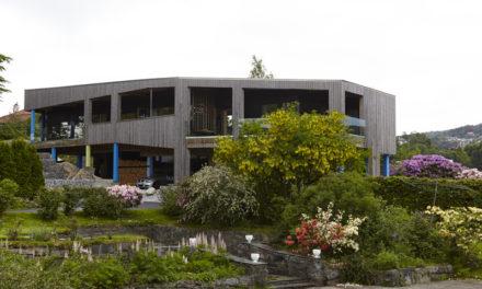 Villa Sval och norske husbyggere