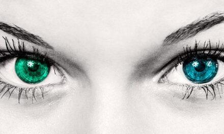 Personer med nedsatt syn  jobbar enkelt med eyeCRM